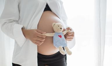Viver a gravidez